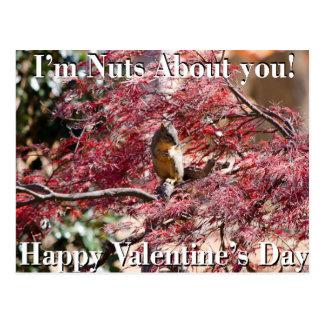 Tarjeta del el día de San Valentín para la escuela Tarjetas Postales