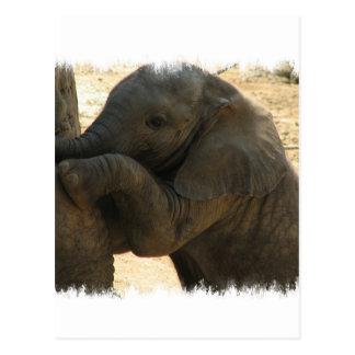 Tarjeta del elefante del bebé tarjetas postales