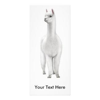 Tarjeta del estante de la alpaca tarjeta publicitaria personalizada