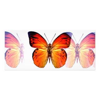 Tarjeta del estante de la mariposa tarjeta publicitaria a todo color