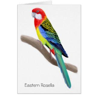 Tarjeta del este del loro de Rosella