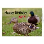Tarjeta del feliz cumpleaños BFF de los patos