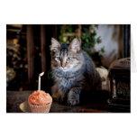 Tarjeta del feliz cumpleaños con el gato
