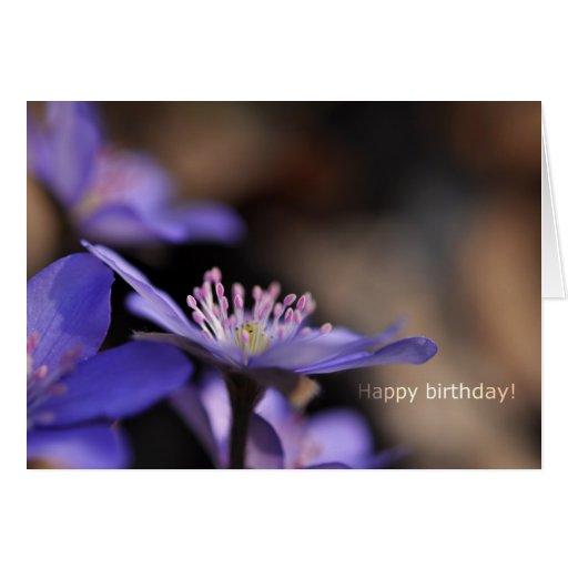Tarjeta del feliz cumpleaños con la flor azul-viol