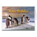 Tarjeta del feliz cumpleaños de la foto del pingüi