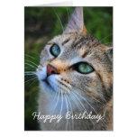 Tarjeta del feliz cumpleaños de la fotografía del