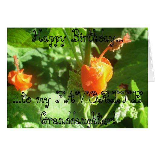 Tarjeta del feliz cumpleaños de la nieta