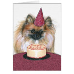 Tarjeta del feliz cumpleaños de Pomeranian