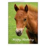 Tarjeta del feliz cumpleaños del caballo del bebé