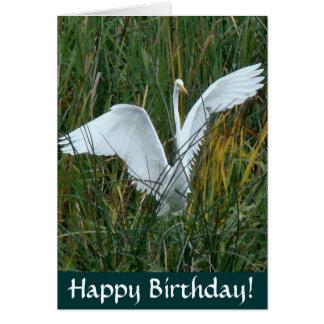 Tarjeta del feliz cumpleaños del Egret
