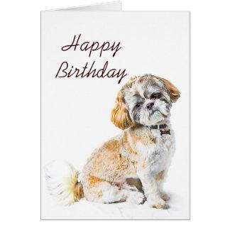 Tarjeta del feliz cumpleaños del perro de Shih Tzu