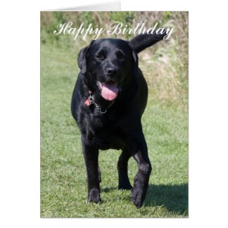 Tarjeta del feliz cumpleaños del perro negro del l