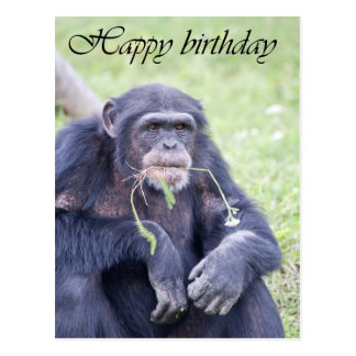 Tarjeta del feliz cumpleaños tarjetas postales