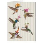 Tarjeta del fiesta del colibrí