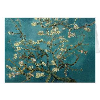 Tarjeta del flor de la almendra