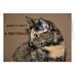 Tarjeta del gatito del feliz cumpleaños