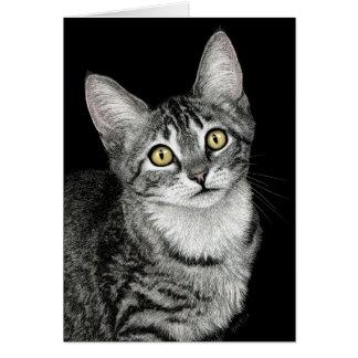 """Tarjeta del gatito del Tabby de la """"estrella de la"""