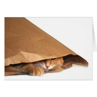 Tarjeta del gato de la bolsa de papel de Brown