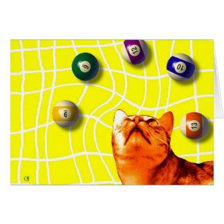 Tarjeta del gato de los billares
