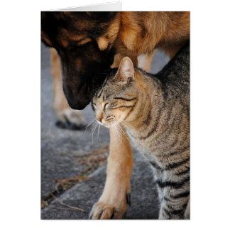 Tarjeta del gato de los mejores amigos y del pasto