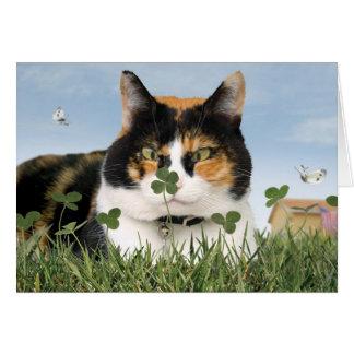 Tarjeta del gato del día de St Patrick