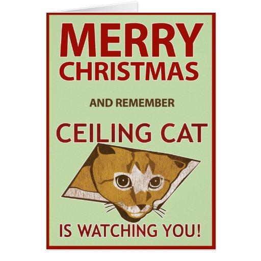 Tarjeta del gato del techo del navidad