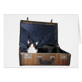 Tarjeta del gato que viaja