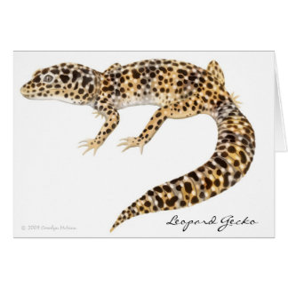 Tarjeta del Gecko del leopardo