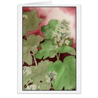 Tarjeta del Hydrangea de la hoja del roble