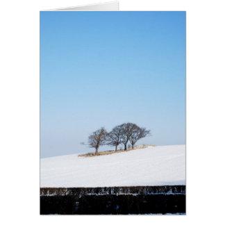"""""""Tarjeta del invierno de Saxondale"""""""