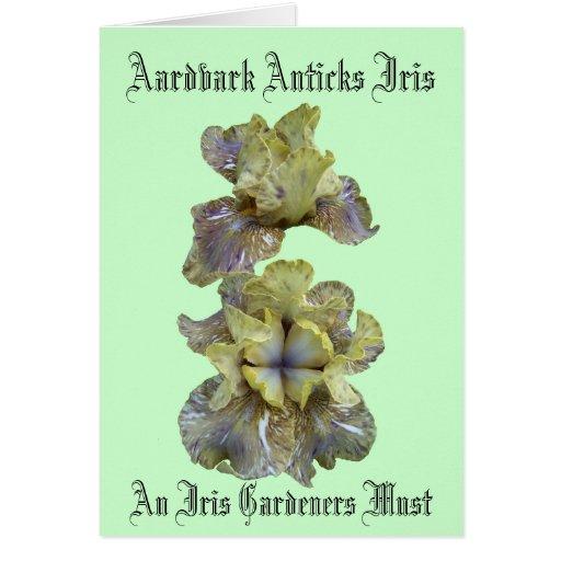 Tarjeta del iris de Anticks del Aardvark