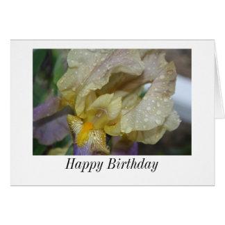 Tarjeta del iris del feliz cumpleaños