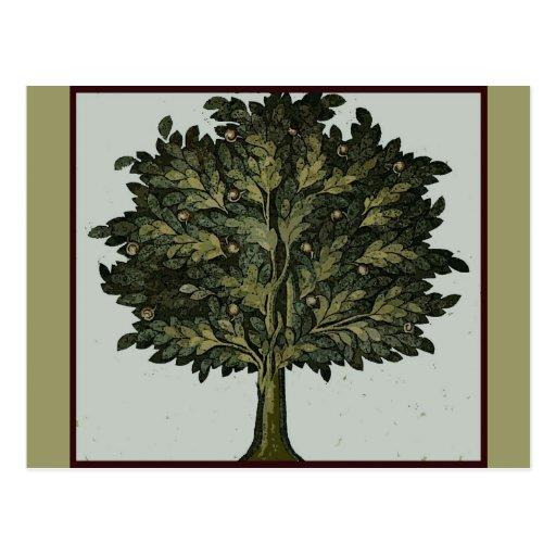 Tarjeta del jardín del árbol tarjeta postal