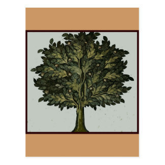 Tarjeta del jardín del árbol tarjetas postales