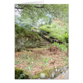 tarjeta del jardín secreto