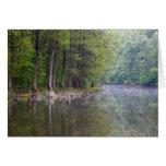 Tarjeta del lago forest
