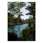 Tarjeta del lago Zaros