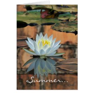 Tarjeta del lirio de agua del solsticio de verano