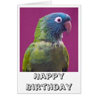 Tarjeta del loro del feliz cumpleaños
