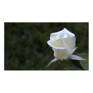 Tarjeta del negocio o del perfil del rosa blanco tarjetas de visita
