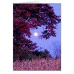 Tarjeta del otoño con la Luna Llena, roble de tabl