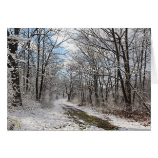Tarjeta del país de las maravillas del invierno