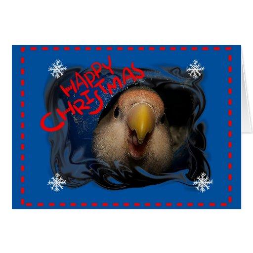 Tarjeta del pájaro del amor de las felices Navidad