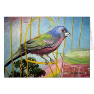 Tarjeta del pájaro del arco iris (espacio en blanc