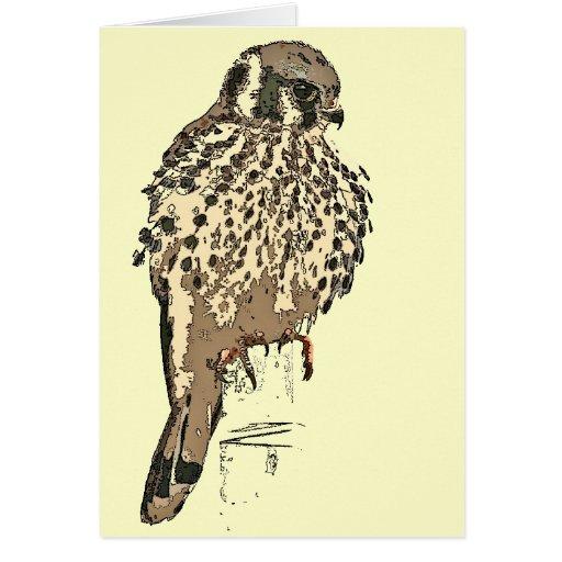 Tarjeta del pájaro del rapaz del cernícalo