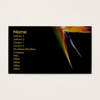 Tarjeta del perfil de la ave del paraíso tarjetas de visita