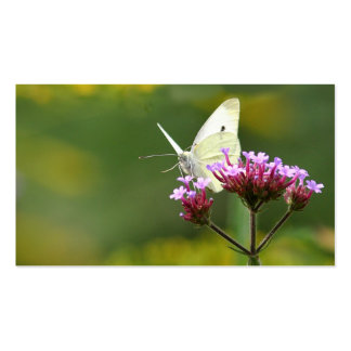 Tarjeta del perfil de la mariposa plantillas de tarjetas personales