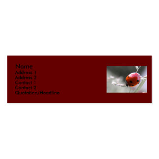 Tarjeta del perfil de la mariquita tarjetas de visita mini