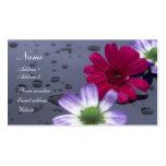 Tarjeta del perfil de las gotas de agua y de las f tarjeta personal