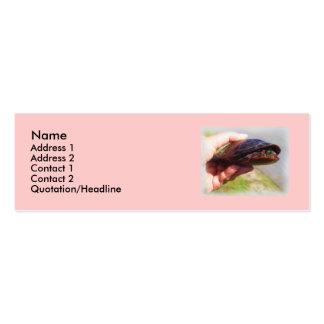 Tarjeta del perfil del amante de la tortuga tarjetas de visita